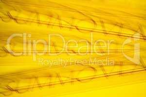 Hintergrund, gelb-orange