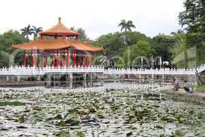 Pagoda on the lotus pond in City park