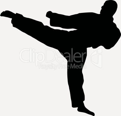 Sport Silhouette - Karate Kick