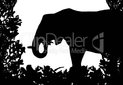 Elephant in Isolated Bush Frame Vector