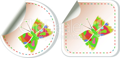butterfly icon set isolated on white, vector button