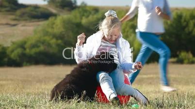 Girl Feeding Newfoundland Dogs