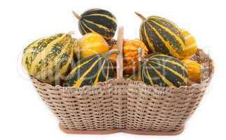 Decorative pumpkins in basket