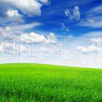 field and the beautiful blue sky