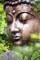 Grunge Buddha Nature - Abgeblätterte Farbe