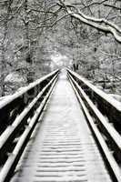 Snowcovered walkway Nidd Gorge