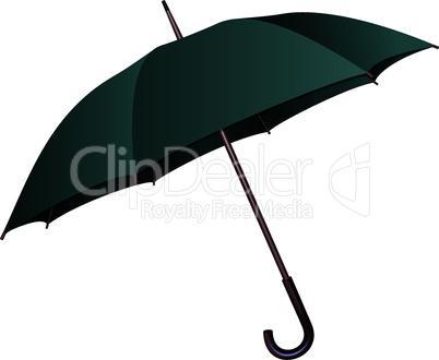 Green umbrella on white background