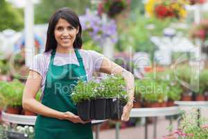 Garden center worker carrying box of flowers