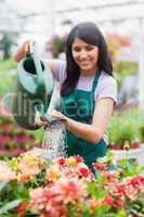 Garden center worker watering plants