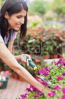 Worker tending to plants