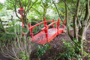 Red bridge in forest