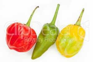 Three chile's in a row
