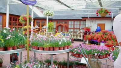 Employee helping couple to choose plants