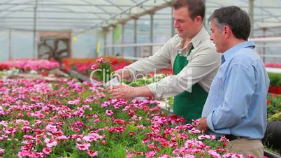 Gardener and customer standing at the greenhouse