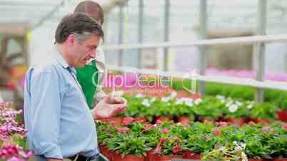 Gardener talking to a customer