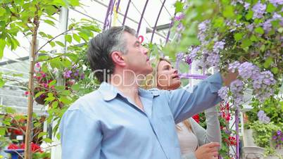 Couple standing looking at a plant in hanging basket