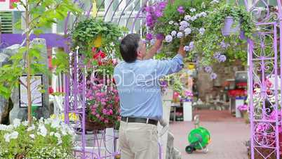 Man looking at hanging basket and smelling flowers