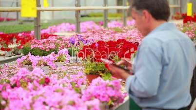 Man working at a greenhouse holding a tablet pc