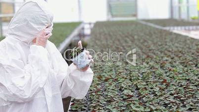 Scientist standing at the greenhouse holding a plant