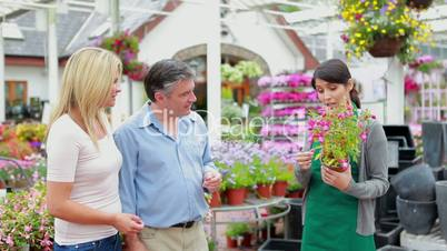 Gardener holding a plant talking to customer