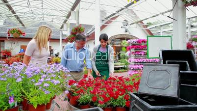 Couple and assistant standing at the garden centre