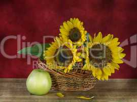 Still life with sunflowers and apples