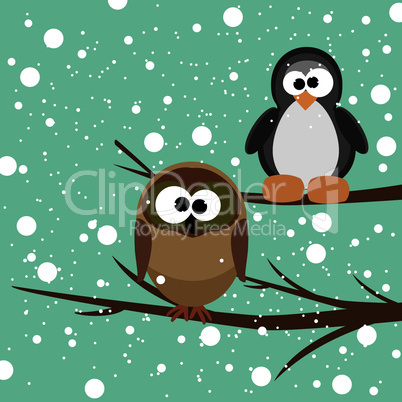 vector owl and penguin