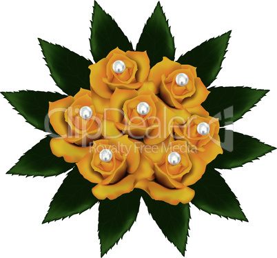 vector yellow roses with pearls