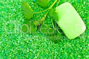 Salt of the green with soap and nettles