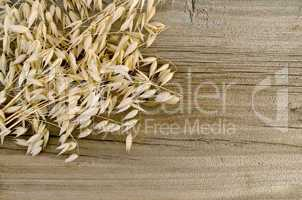 Stalks of oats on an old wooden board