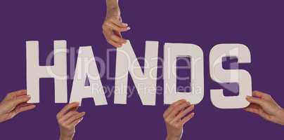 White alphabet lettering spelling HANDS