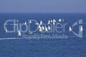 Segel regatta mit vielen Segelbooten im offenen meer