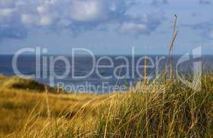 Sylt Urlaub am MeerBlick durch das Dünengras
