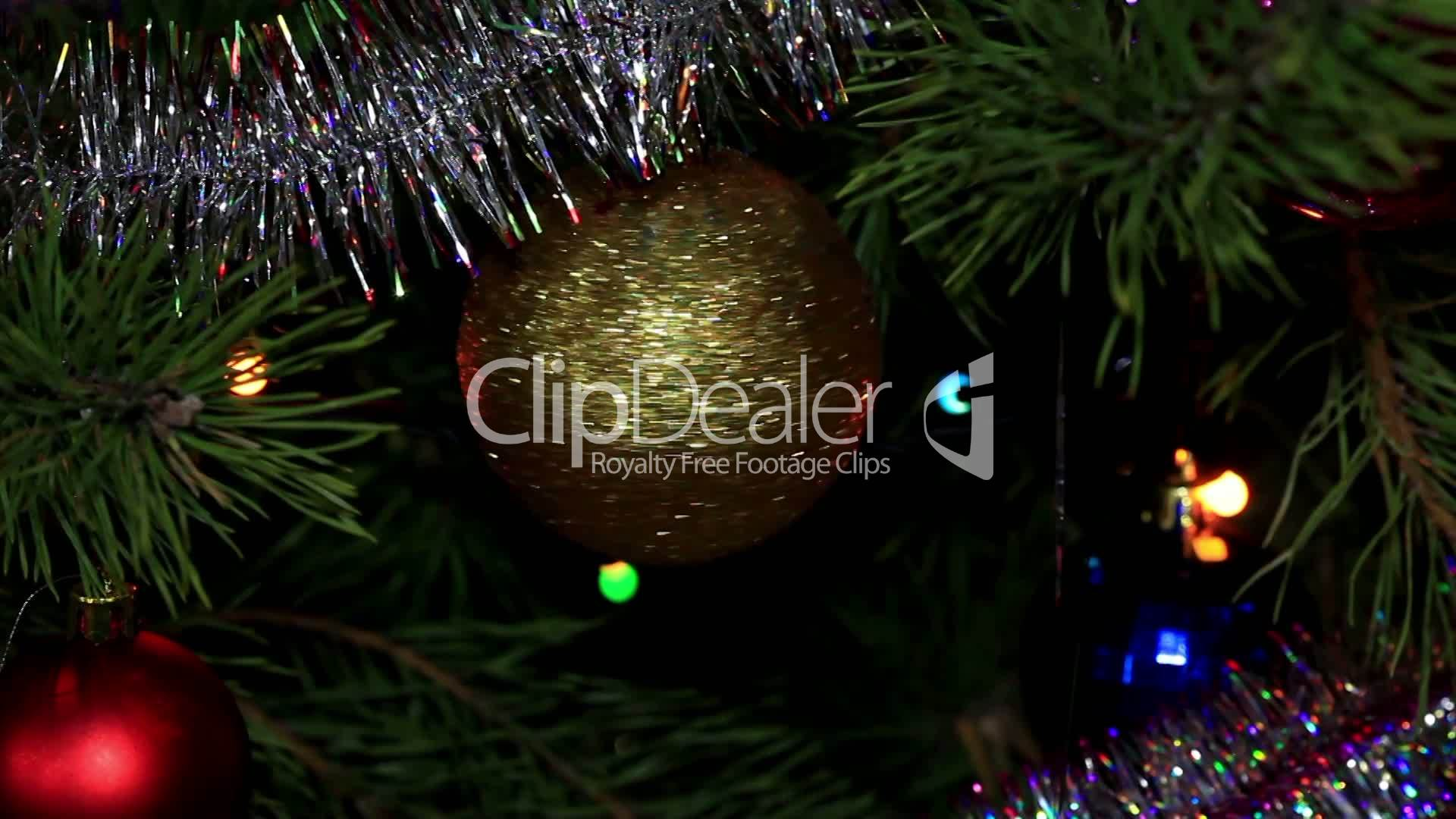 tree twinkle winter xmas royalty free videos