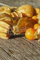 Physalis / Golden Strawberry