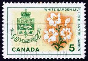 Postage stamp Canada 1964 White Garden Lily, Arms of Quebec