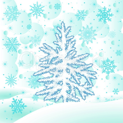 Christmas tree fir  on  a snow glade