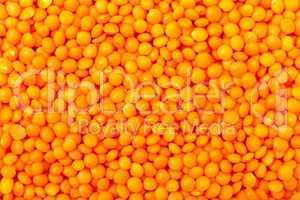 Backdrop of Orange Lentil
