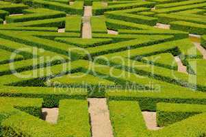France, French formal garden in the Domaine de Villarceaux