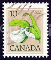 Postage stamp Canada 1977 Franklin?s Lady?s-slipper, Orchid,