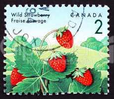 Postage stamp Canada 1992 Wild Strawberry, Fragaria Vesca Plant,