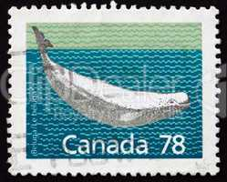 Postage stamp Canada 1990 Beluga Whale, White Whale
