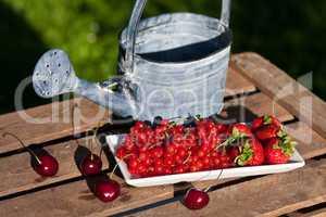 Früchte mit Giesskanne, Fruits with watering can