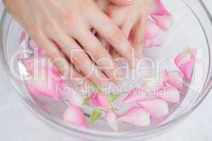 Woman's hands in bowl with petals at hands spa