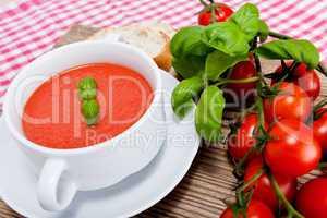 Frische tomatensuppe in einer weißen suppentasse mit basilikum