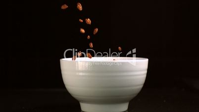 Chocolate rice cereal falling in a bowl