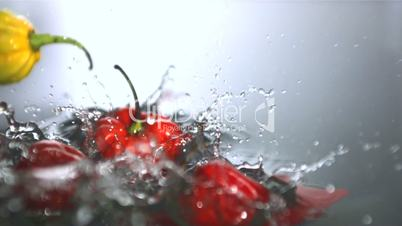 Chilies falling in water