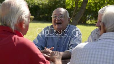 Group of senior men having fun and laughing in park