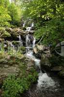 Dark Hollow Falls in Shenandoah VA