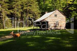 Log cabin with deer in clearing